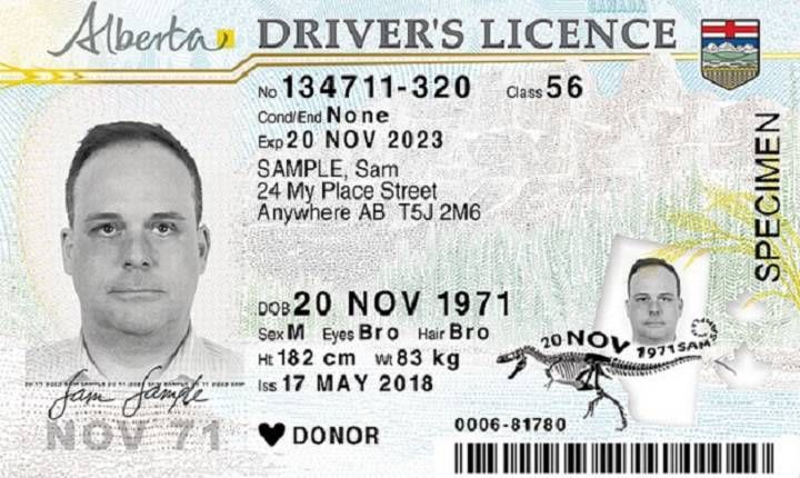 New Alberta Driver S Licence And Id Cards To Save 1m Per Year Province Drivers License Driver S License Licensing