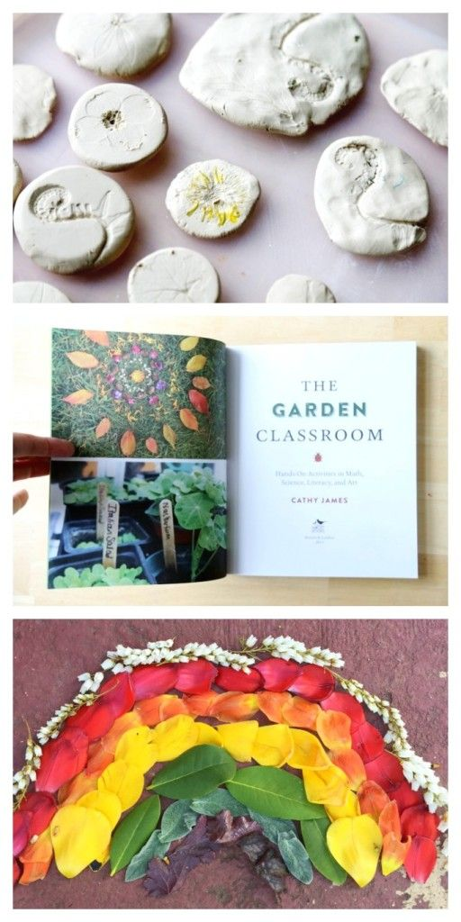 The Garden Classroom - Learning from and playing in nature