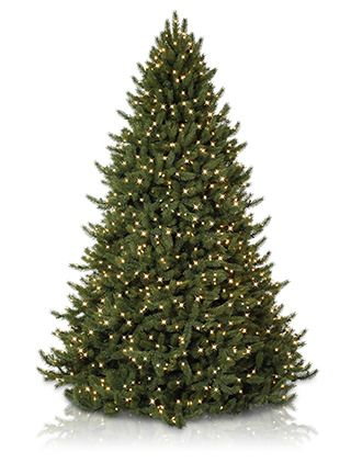 The Vermont White Spruce is not only the jewel in our Vermont Signature Collection. It comes pre-lit, with both color and white lights also a remote.