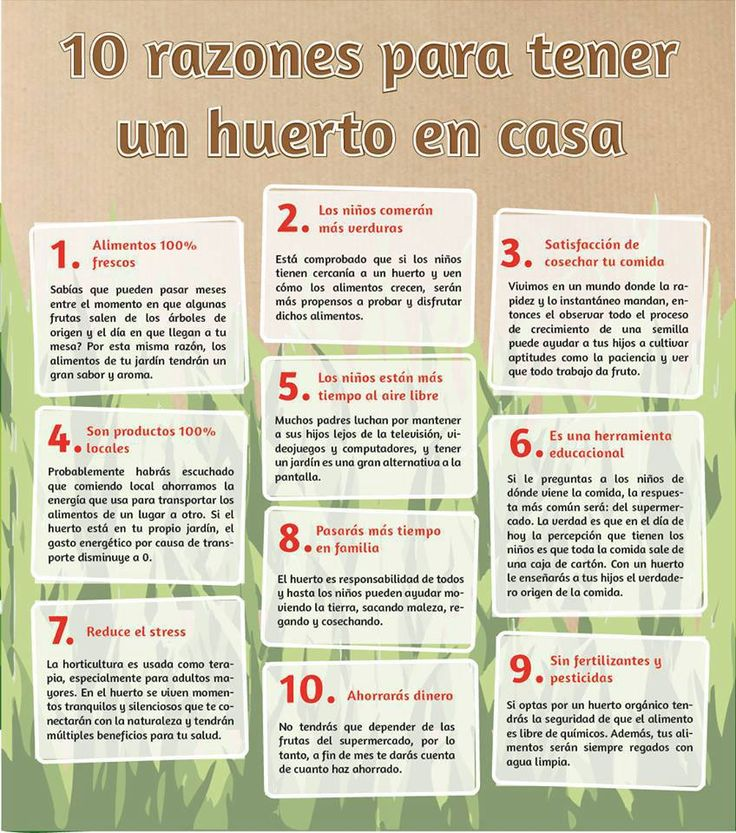 10 razones para tener un huerto en casa.
