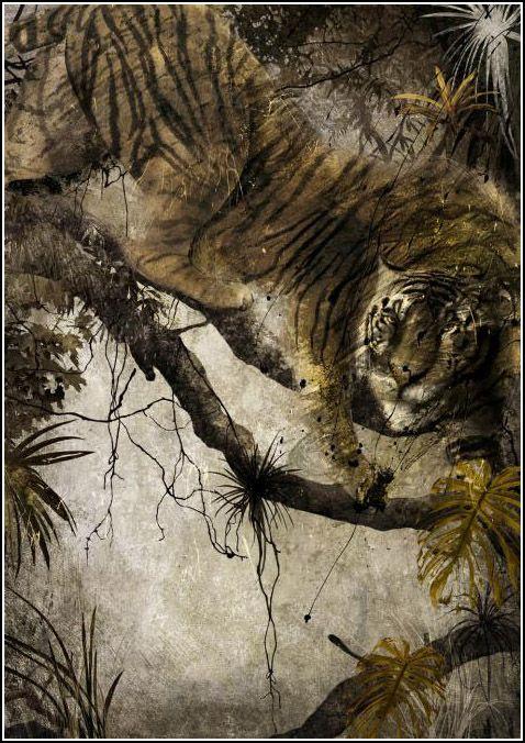 Luis Gabriel Pacheco | Gabriel Pacheco. El libro de la Selva