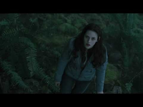The Twilight Saga - I can't explain it, it just is. The struggle between two natures in Edward...the cheesy romantic in me...the baseball scene...whatever it is, I like it.