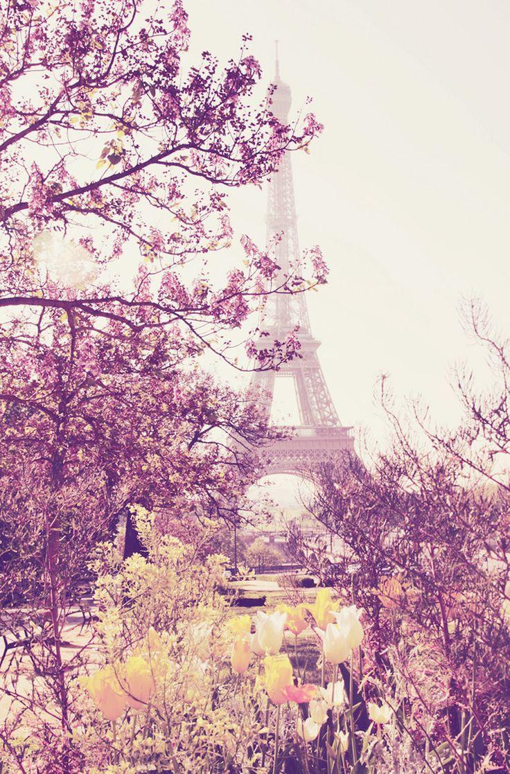 #Paris views through rose-colored glasses.