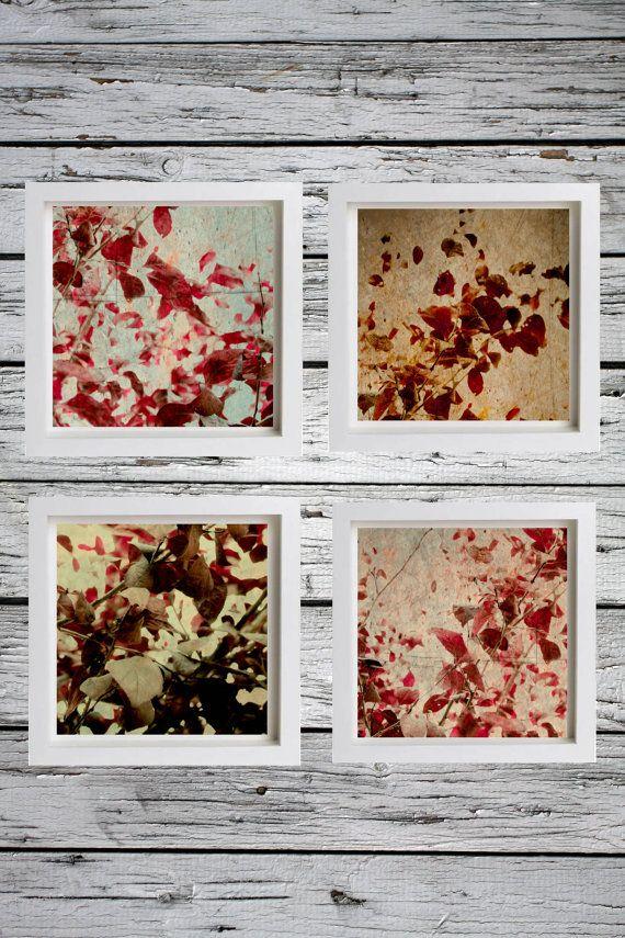 Nature Photography Set of Photography Prints by BelmondoVintage