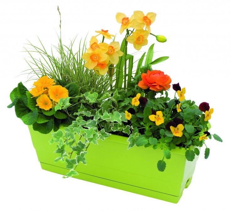 id e jardiniere jardini re de fleurs printani res jardiland art floral pinterest. Black Bedroom Furniture Sets. Home Design Ideas