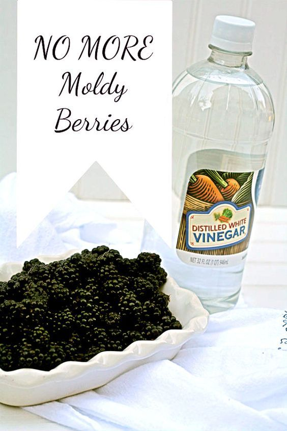 Prevent Berries from Molding   Use this non toxic method for keeping your berries fresher longer. Click on the photo to visit TodaysCreativeLife.com
