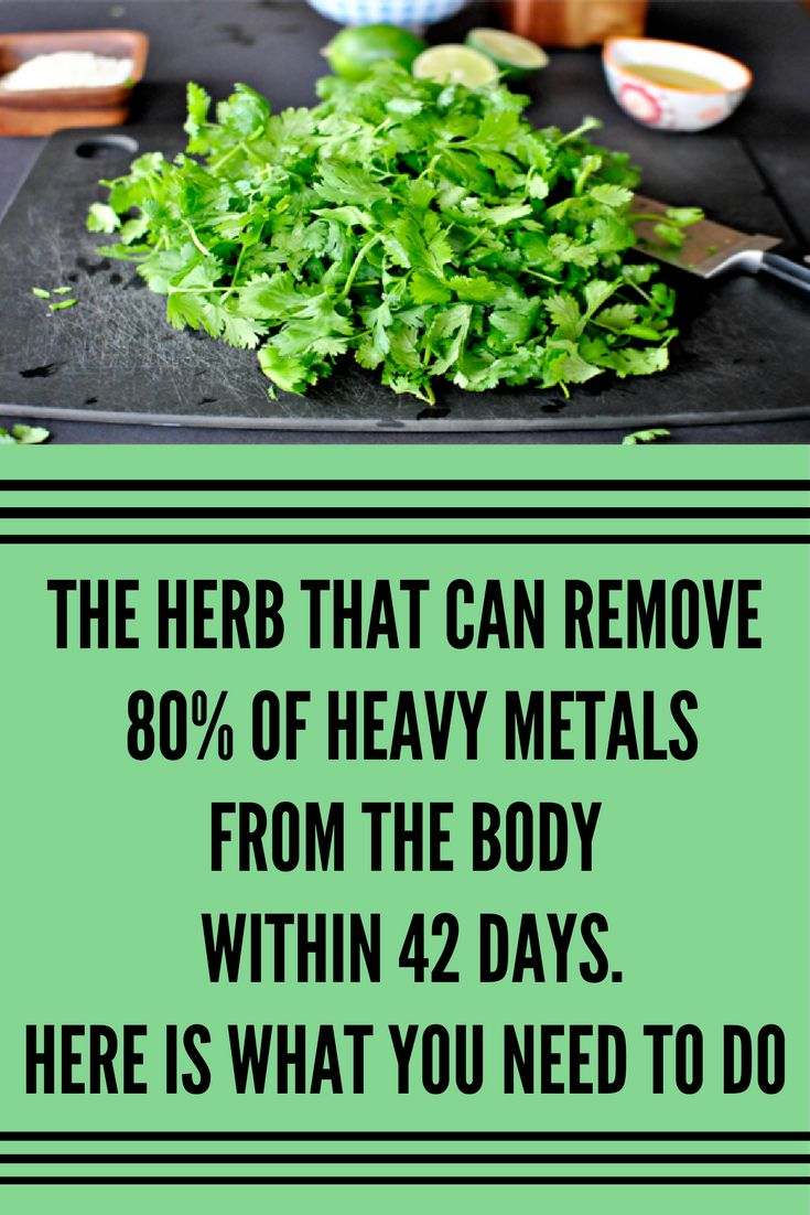 The Herb That Can Remove 80% Of Heavy Metals From The Body Within 42 Days. Here Is What You Need To Do