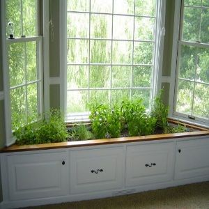 The indoor Herb garden is different but watch your pets..