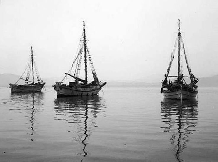 Τρίκερη 1960 φωτογραφία Τάκης Τλούπας