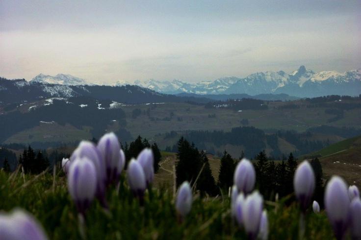 Eggiwil, Switzerland Stauffer, Schenk