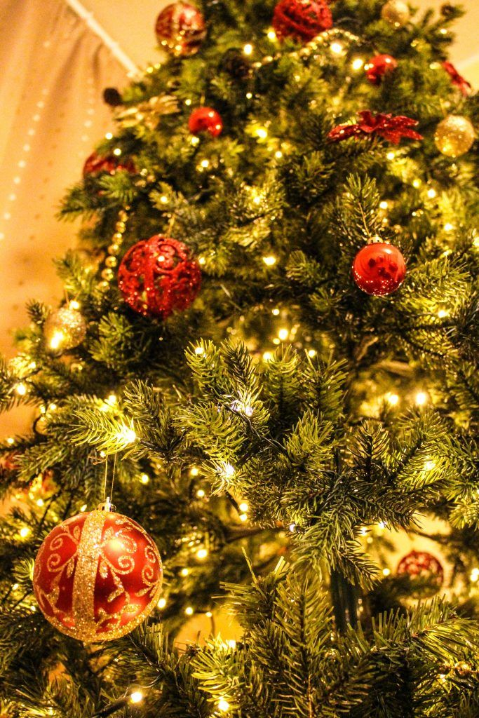 Download this free photo here www.picmelon.com #freestockphoto #freephoto #freebie /// Christmas Tree | picmelon
