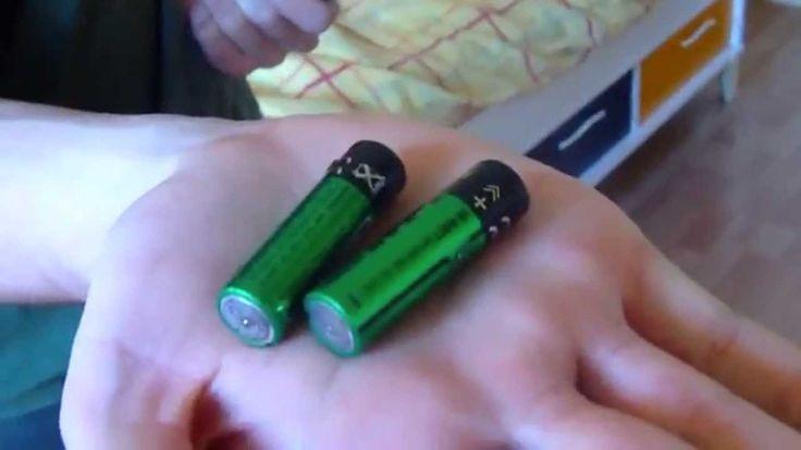 Chargeur piles alcalines : Incroyables Expériences [66] Chargeur de pile...