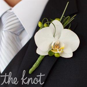 An Elegant Outdoor Wedding in Toledo, OH