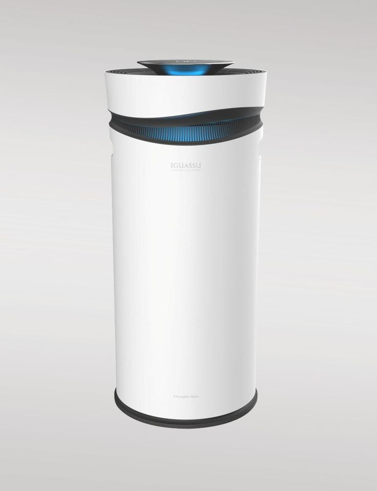 Air Purifier WHIRLS IV