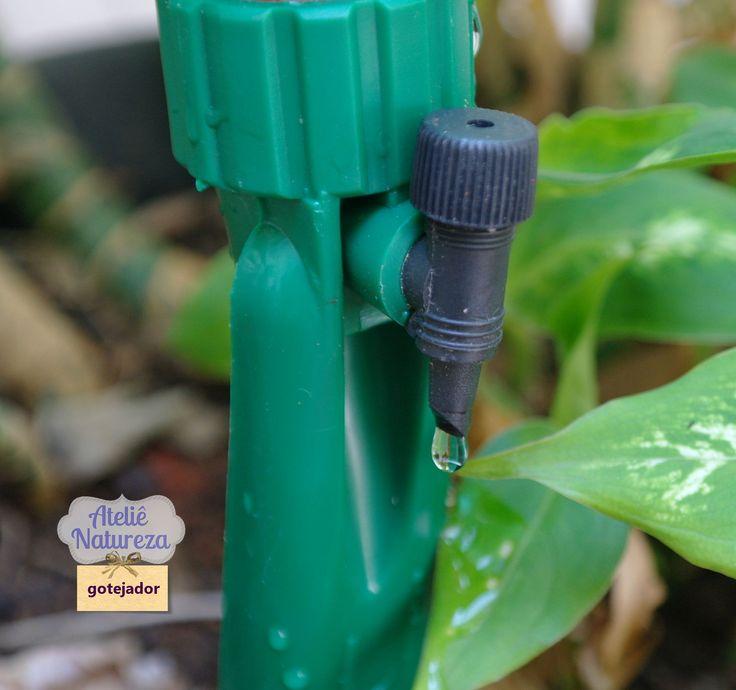Gotejador para regar plantas e economizar água!