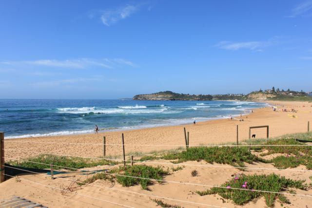 First job of the day Mona Vale Sydney NSW Australia- Why would you live anywhere else in the world