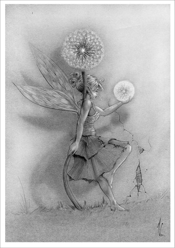 "Grande Carte Matthias Walter ""Fleur de neige"""