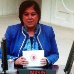 CHP'li Türkmen, Sosyal Hizmet Uzmanlarının sorunlarını TBMM gündemine taşıdı