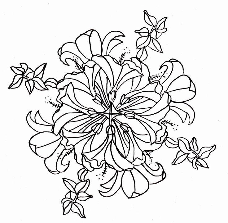 Line Art Hibiscus : Line drawing hibiscus lilies mandala drawings