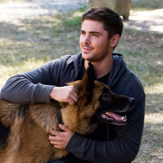 Zac in The Lucky One