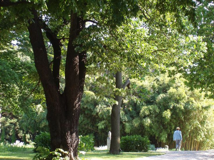 University of Vienna - Botanical Garden