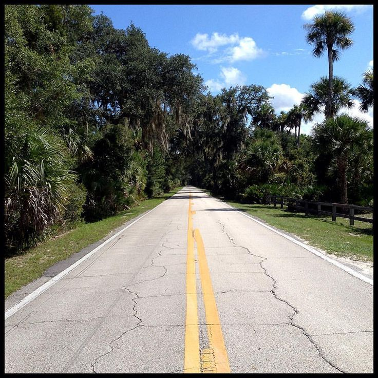 Old Dixie Highway by Ormond Beach  #florida #travel #olddixiehighway #ormondbeach