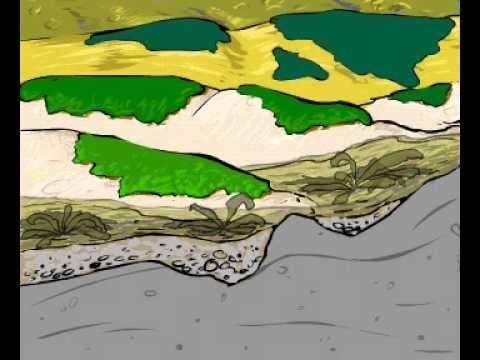 Encyklopedie - Zemská kůra, půda