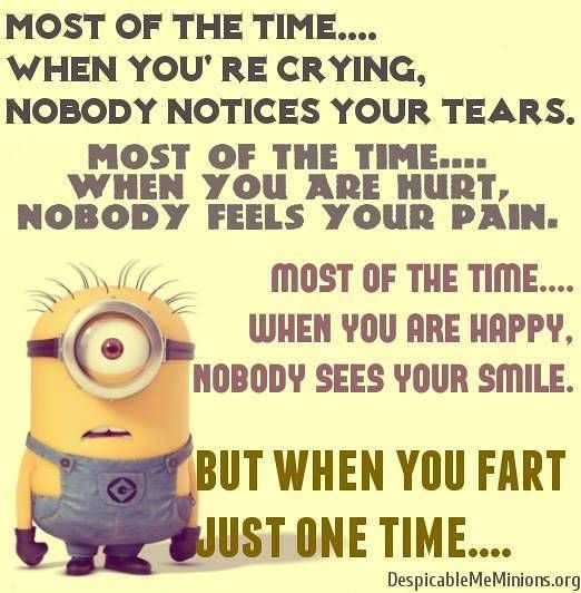 Ha!! TRUE! So make it count!! ;0)Funny Quotes – Funny minion quotes | October 29, 2014 | By Arpesh Soni