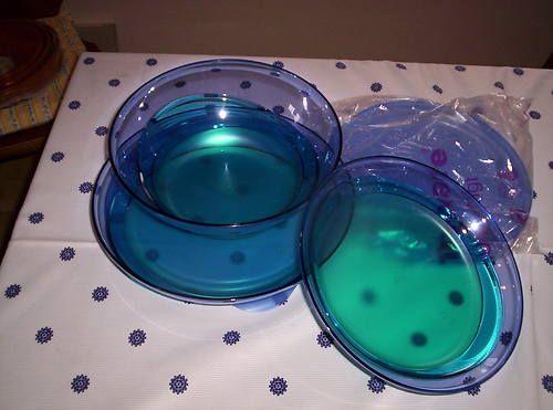 Tupperware Eleganzia-Set NEU | eBay