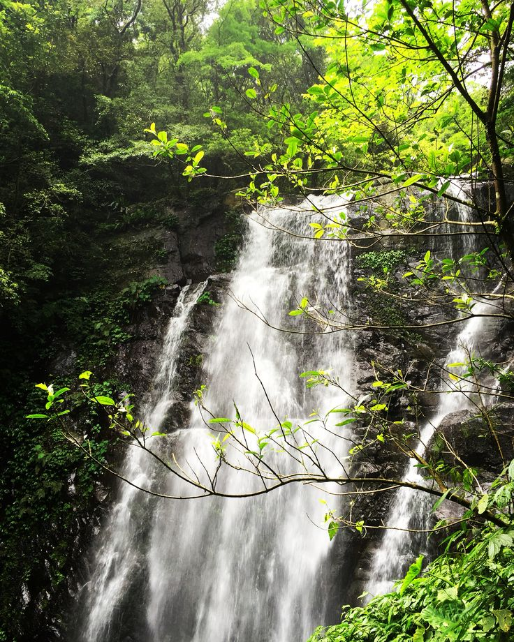 滿月圓國家森林遊樂園之處女瀑布 Virgin Waterfall, Manyueyuan National Forest Recreation Area