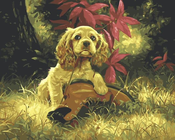 No Frame Cute Puppy Dog DIY Handpainted Oil Painting By Numbers Kits On Canvas