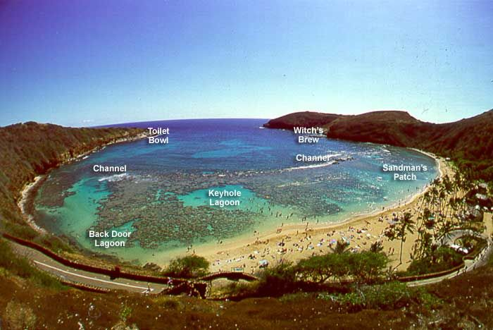 Hanauma Bay, the best snorkeling in Oahu.  A sure bet that you will swim with the sea turtles!
