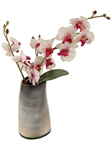 Natural Horn Vase Centerpiece Home Decoration Handmade Gift From