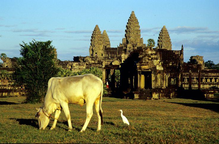 Angkor: Tempio Angkor Wat