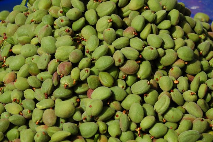 almonds sold on Hama market