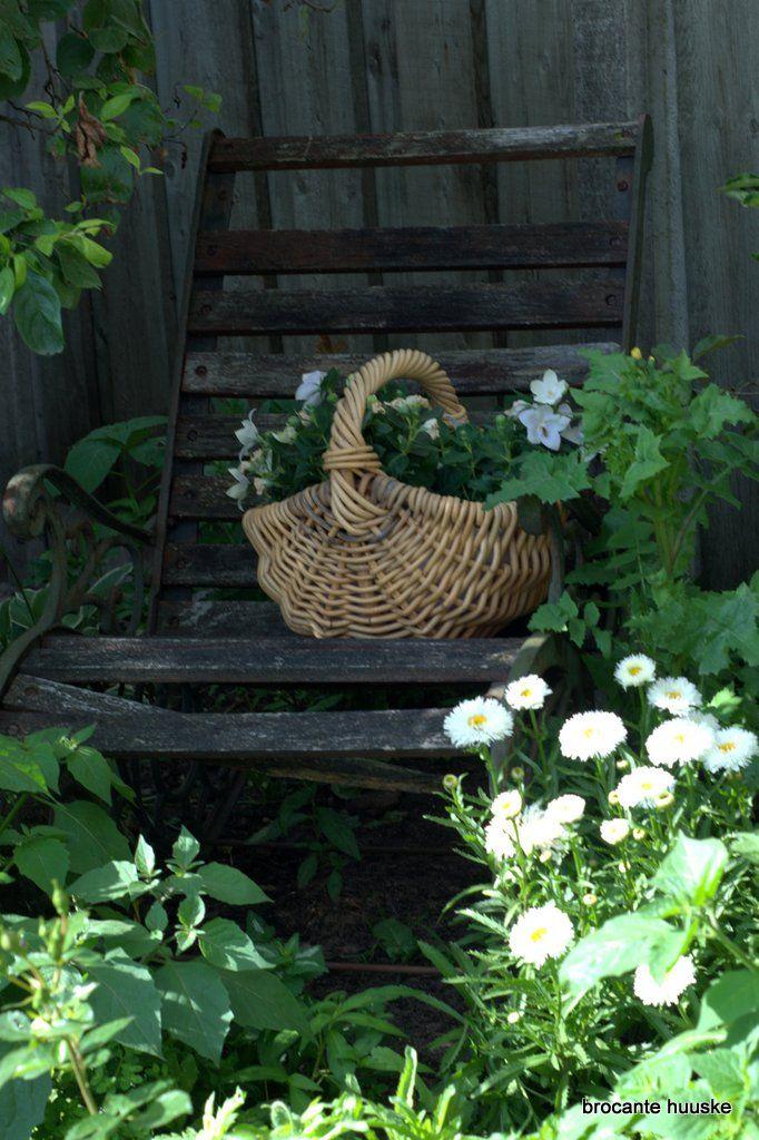Cottage garden De bloeiende cottage tuin