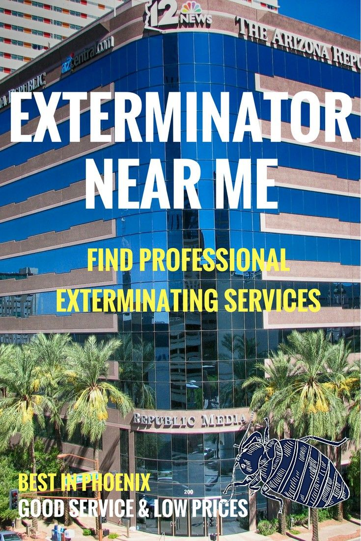 The Ultimate Guide To Hiring Local Bed Bug Exterminators Top 10 Q A Bed Bug Extermination Bug Exterminator Bed Bugs