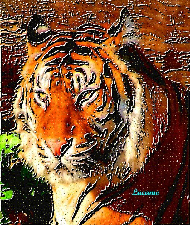 Tiger - Lucamo: Creating with images