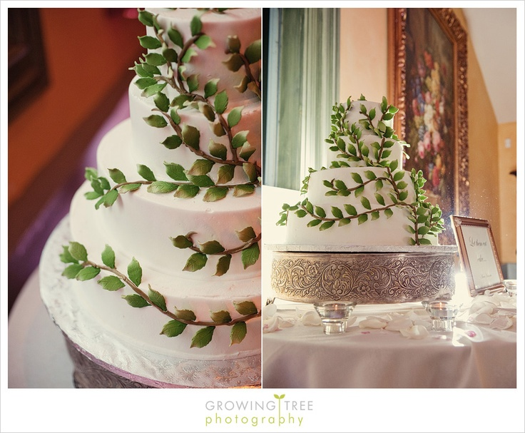 17 Best images about Natural Cake Decorations on Pinterest ...
