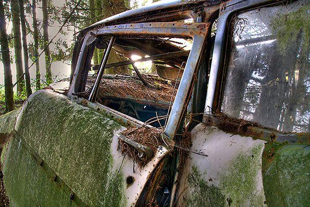 cementerio de automóviles
