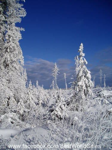 Check out our winter wonderland in Prince George (Canada).