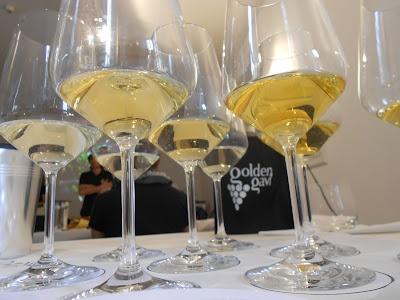 Gavi guided wine taste degustation #Gavi #wine