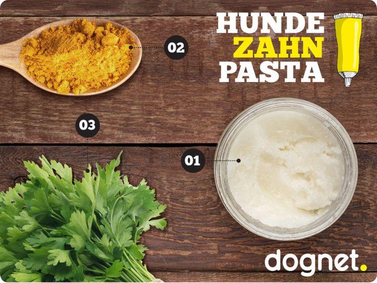 Rezept für Hundezahnpasta