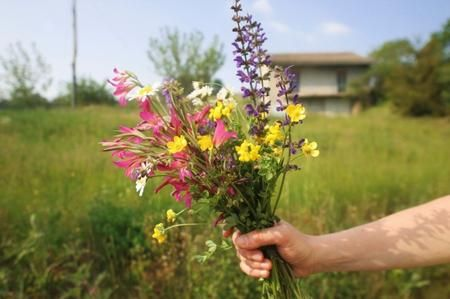Come realizzare una composizione di fiori di campo