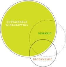 Image result for supply chain environmental brancott