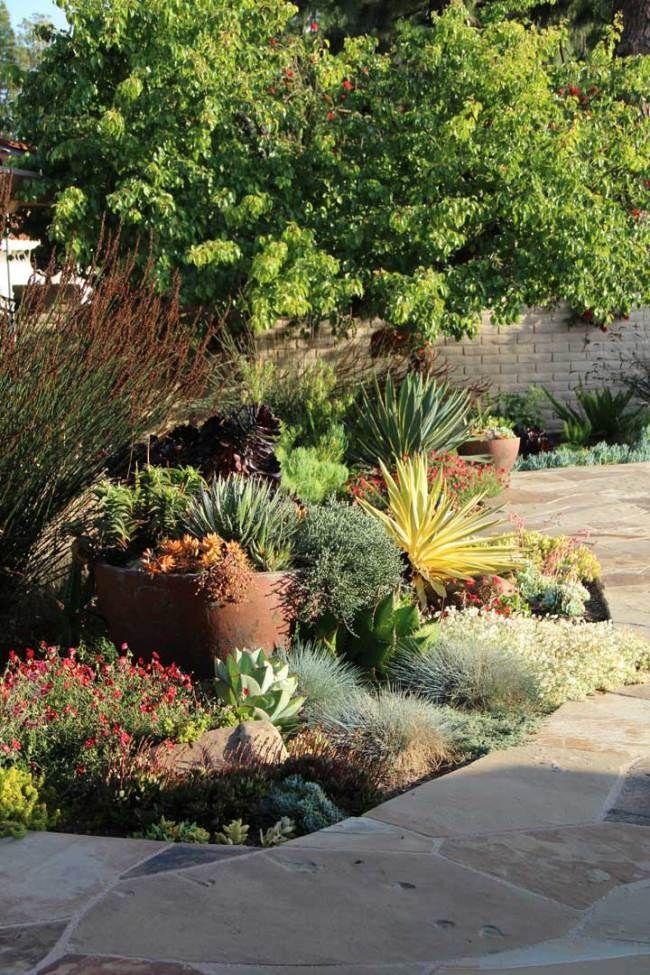 231 best Dry Garden images on Pinterest Dry garden Garden ideas