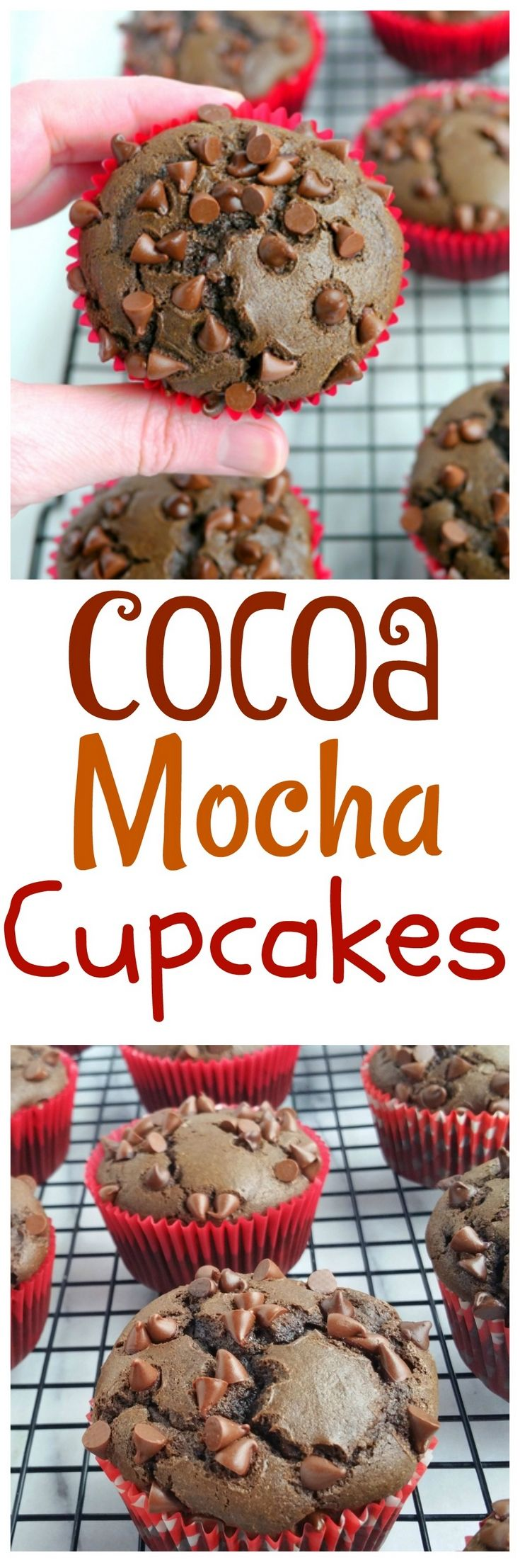 These Cocoa Mocha Cupcakes have a grown-up edge. N…Edit description