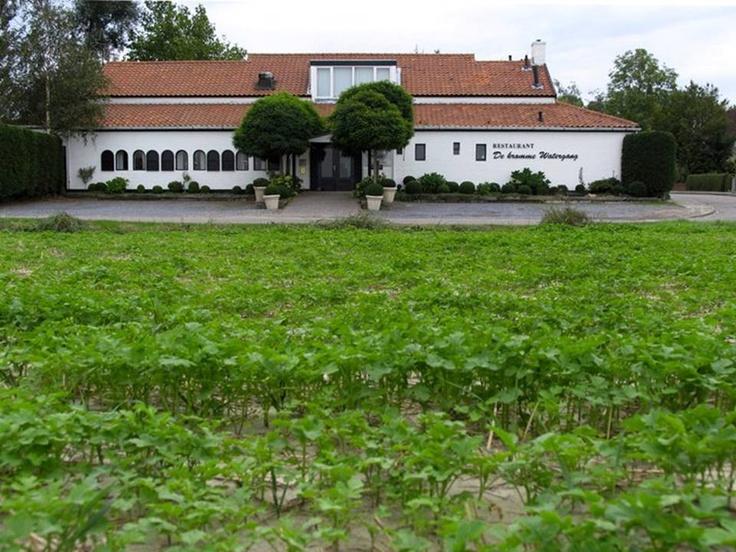 Restaurant de Kromme Watergang. Onze keuken is gebaseerd op de zilte en aardse smaken die we vinden hier rondom 'De kromme Watergang'. We streven ernaar om lichte, gemakkelijk verteerbare en creatieve gerechten te maken geïnspireerd op het mooie Zeeuws Vlaamse landschap. Er wordt op het moment 1 ha tuin aangelegd voor de deur waar we groenten en fruit gaan verbouwen in samenwerking met enkele Zeeuws Vlaamse boeren.  Slijkplaat 6 , 4513 KK Hoofdplaat (NL) 0031(0)117-348696