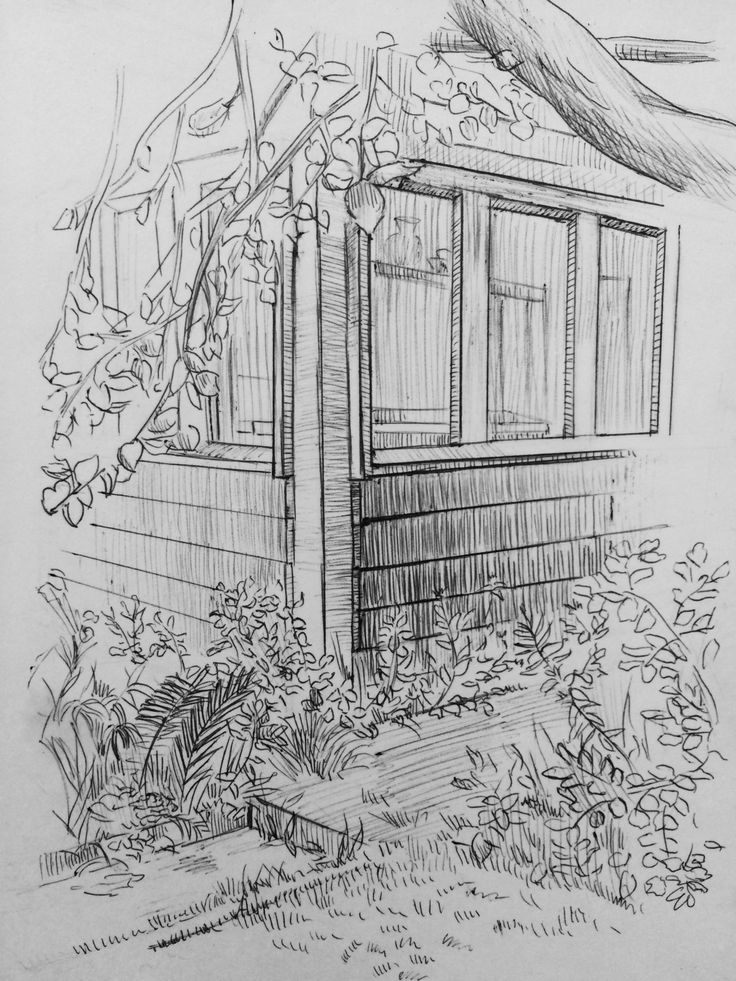 My country place. Sketch . Ball-point pen.