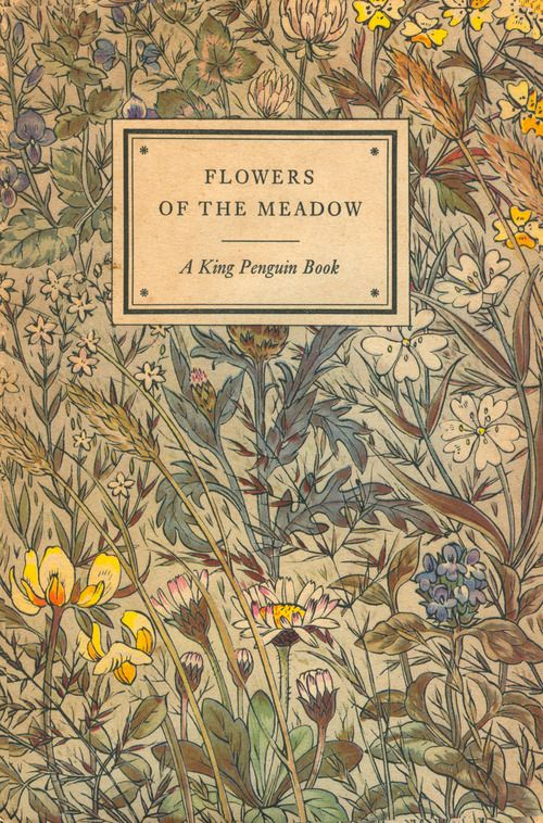 King Penguin 53 • FLOWERS OF THE MEADOW • Author: Geoffrey Grigson • Cover Design: Robin Tanner • Date Published: June 1950
